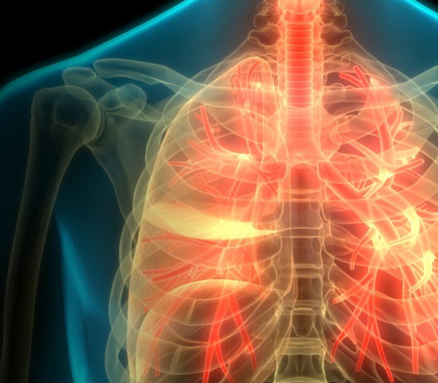 Saiba como o corpo reage quando você deixa de fumar